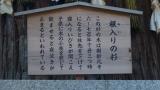20141011諏訪大社177