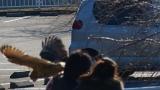20150201水神さん沼津港40