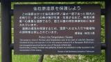 20150503原生の森長尾峠038