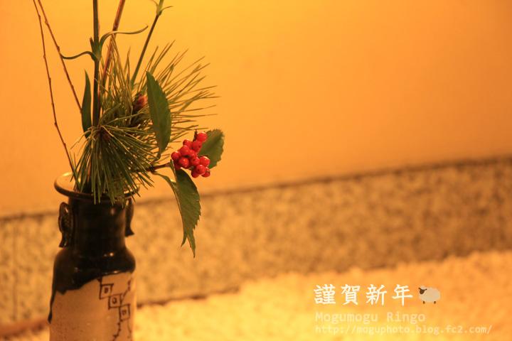 IMG_9451.jpg