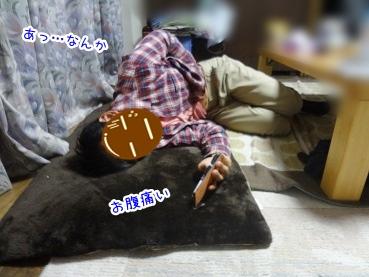 kinako2728.jpg