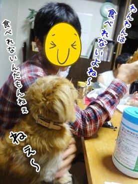 kinako2732.jpg