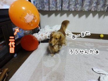 kinako2746.jpg