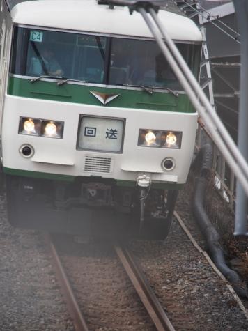 JR東日本 185系 電車