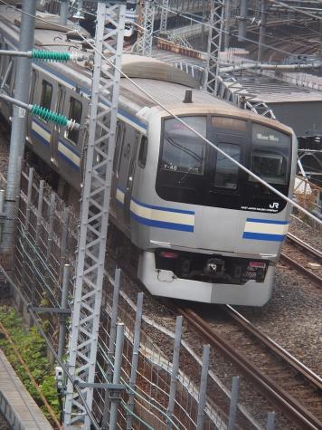 横須賀線 E217系 電車