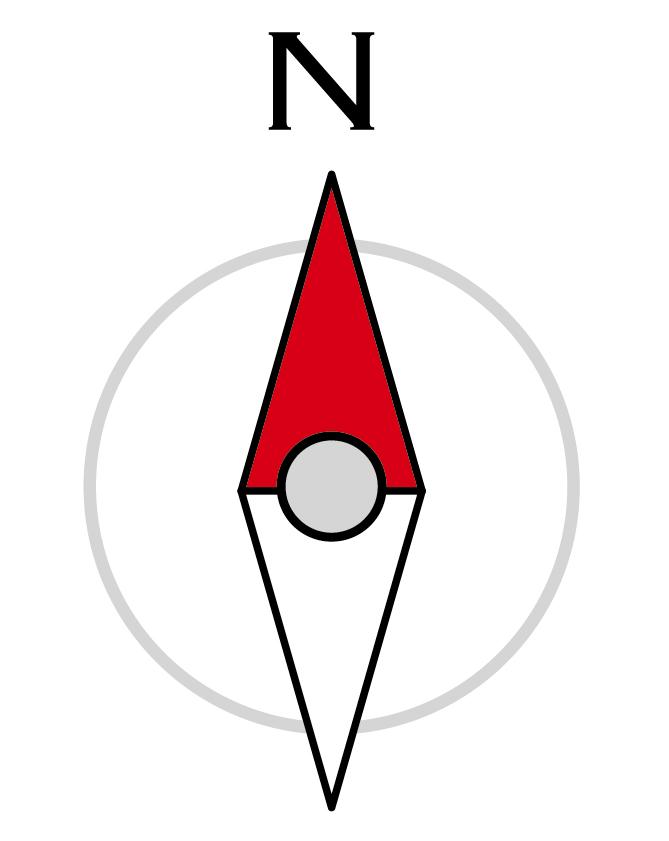 「第六感」が作れた…新たな「磁気感覚」をラットに持たせる実験に成功