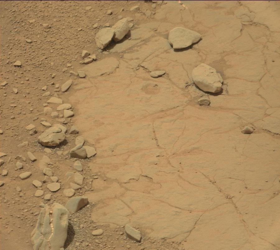 NASAのサイトに掲載された火星の画像に「恐竜の頭蓋骨」と思われる化石が写し出される!