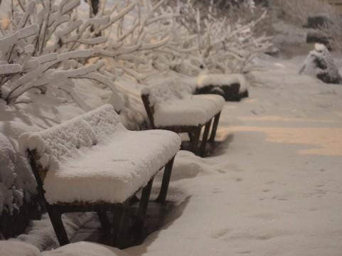 北海道・旭川で「記録的な大雪」11月として100cm超えは8年ぶり…「1年分の雪が降った感じ」