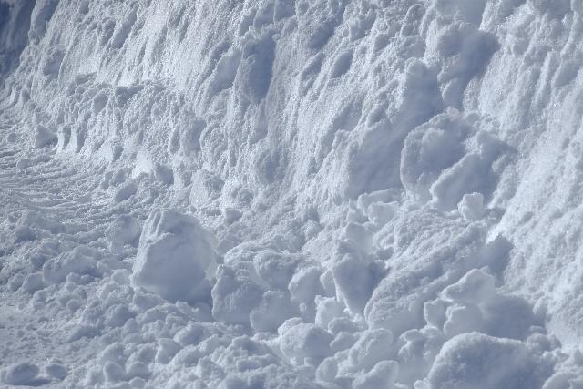 snow24576253.jpg