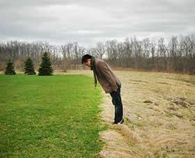 grass_greener.jpg
