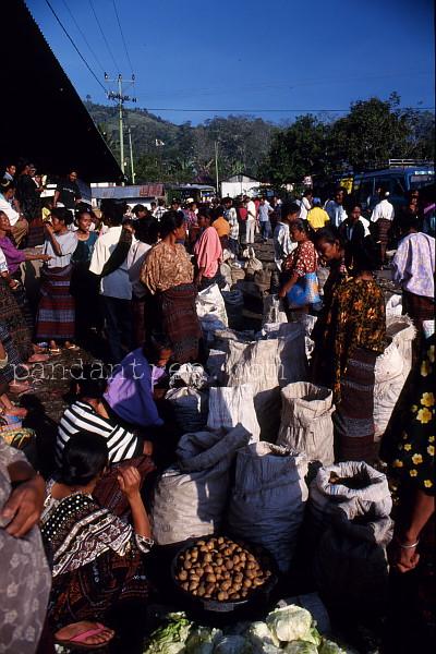 フローレス島の市場にて