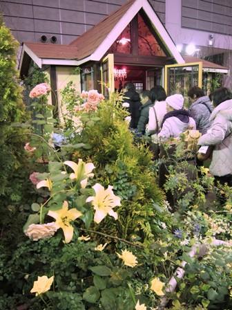 my-garden 204