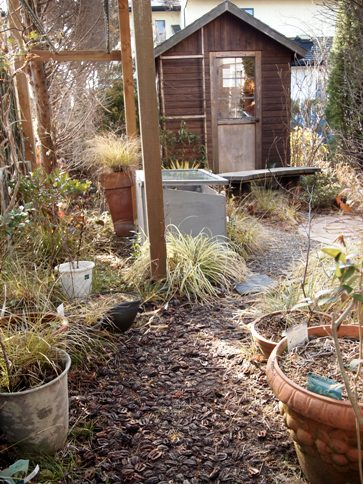 my-garden 002