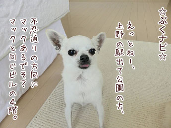 s-1506041 copy
