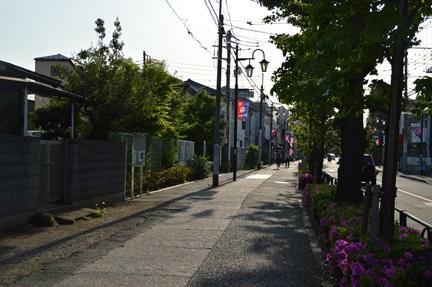 2015-05-01_133.jpg