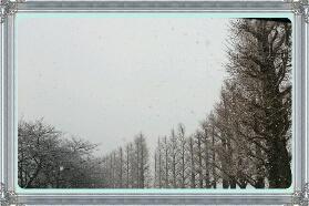 fc2_2015-01-30_17-02-23-629.jpg