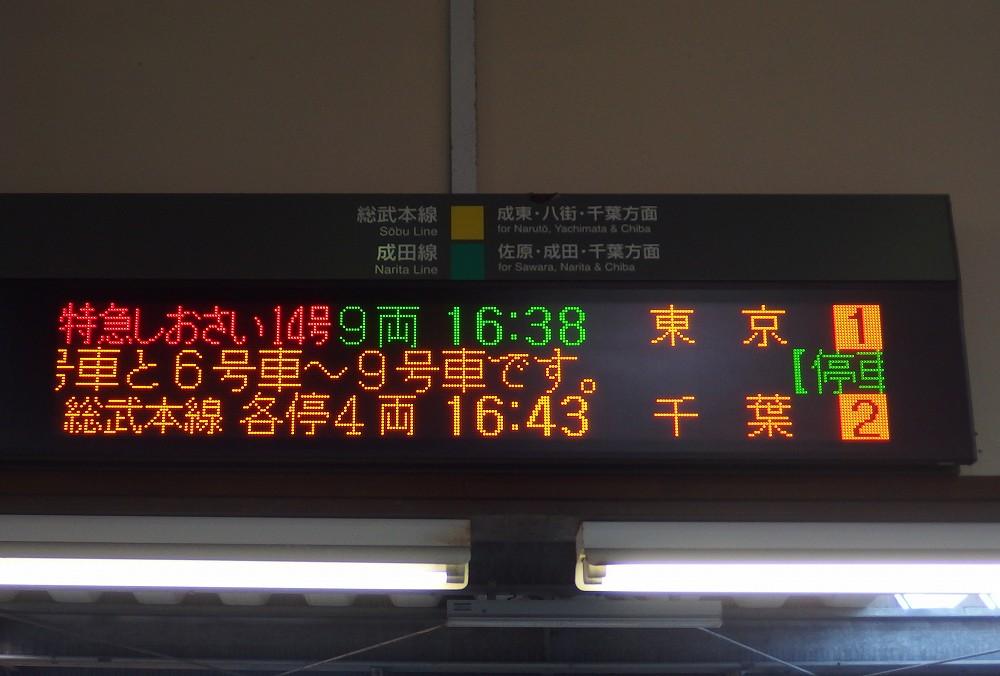 P1310213.jpg