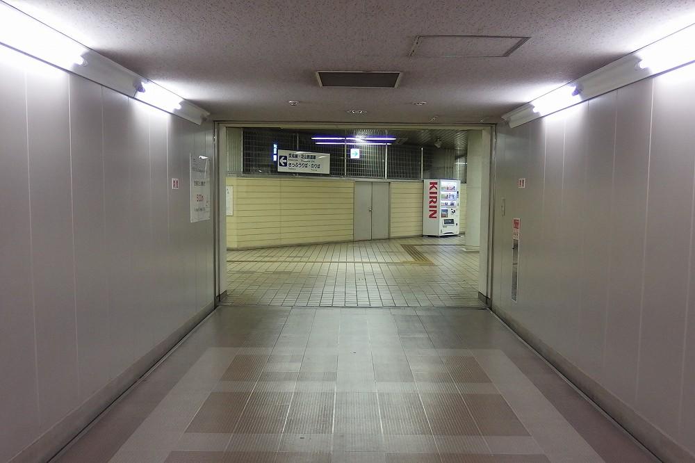 P6150035.jpg