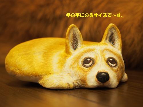 P6160132_convert_20150617231947.jpg