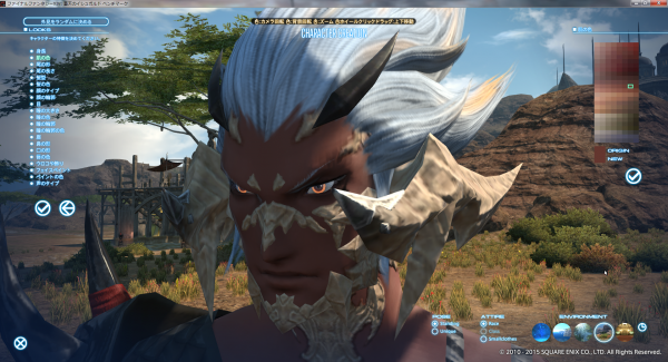 FF14_2015-06-14_01.png