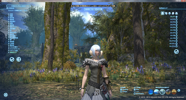 FF14_2015-06-14_11.png