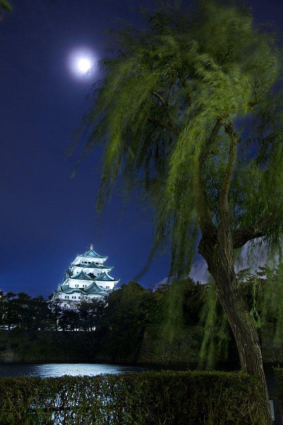 【夜景】名古屋城 朧月夜