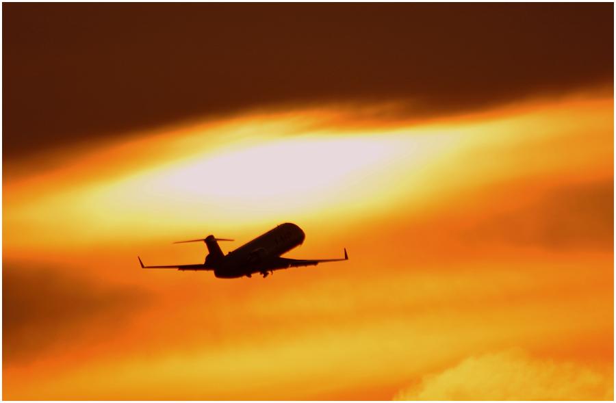 伊丹空港・助手3