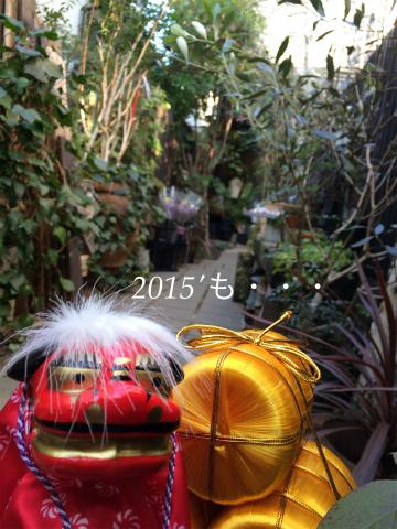 20141231124459baf.jpg