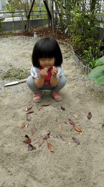 Fotor_14329738921045_R.jpg